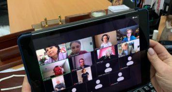 Центр політичної освіти ВО «Батьківщина» долучилися до онлайн зустрічі з представниками NDI